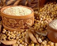 Плюсы и минусы соевого протеина и вообще стоит ли его принимать