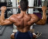 Упражнения на прокачку трапециевидных мышц