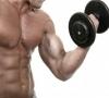 Техника выполнения базовых и изолирующих упражнений на бицепс