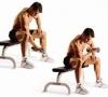 Правильная методика накачивания бицепса с гантелями сидя