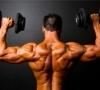 Базовые упражнения на плечи в тренажёрном зале