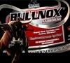 Плюсы и минусы предтреника Bullnox Androrush: особенности и применение