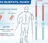 Как подобрать лыжи и палки правильно: жесткость, насечки, выбор по росту и весу
