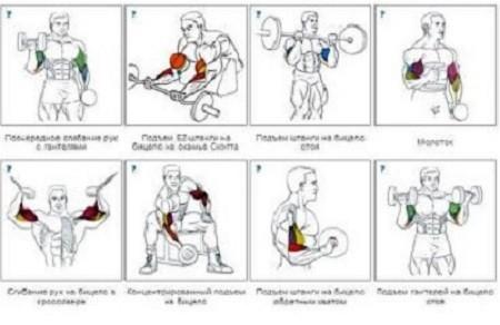 Только комплексные упражнения являются залогом успешной накачки мышц.