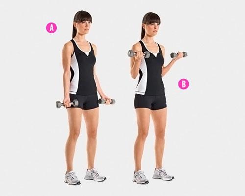Накачать бицепс можно методом сгибания/разгибания рук с гантелями. Наиболее популярный вид тренировки – сгибание гантелей стоя.