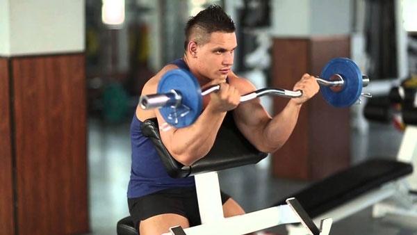 Залог успешной тренировки – правильно составленная тренировочная программа и подобранное питание.