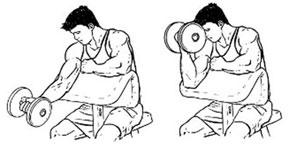 Сгибание рук на скамье Скотта – распространенное упражнение для прокачки бицепсов.