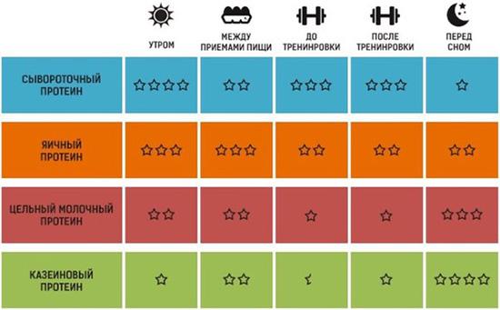 Как правильно употреблять протоин