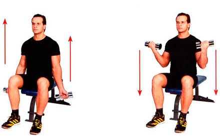 Правильная техника выполнения упражнений.